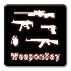 WeaponSay ScreenShot