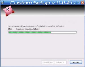 CustomSetup ScreenShot