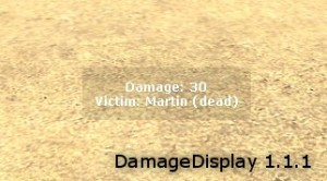 DamageDisplay ScreenShot