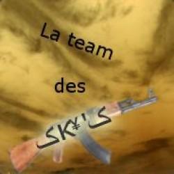 CSS Scipt Fun/Skins Des Sky'S FR/EN Screenshot