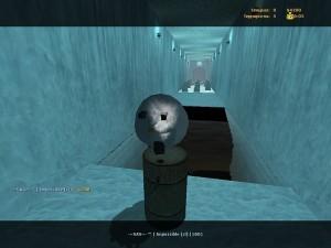 DeathRun Mod Screenshot