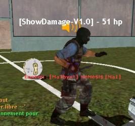ShowDamage ScreenShot